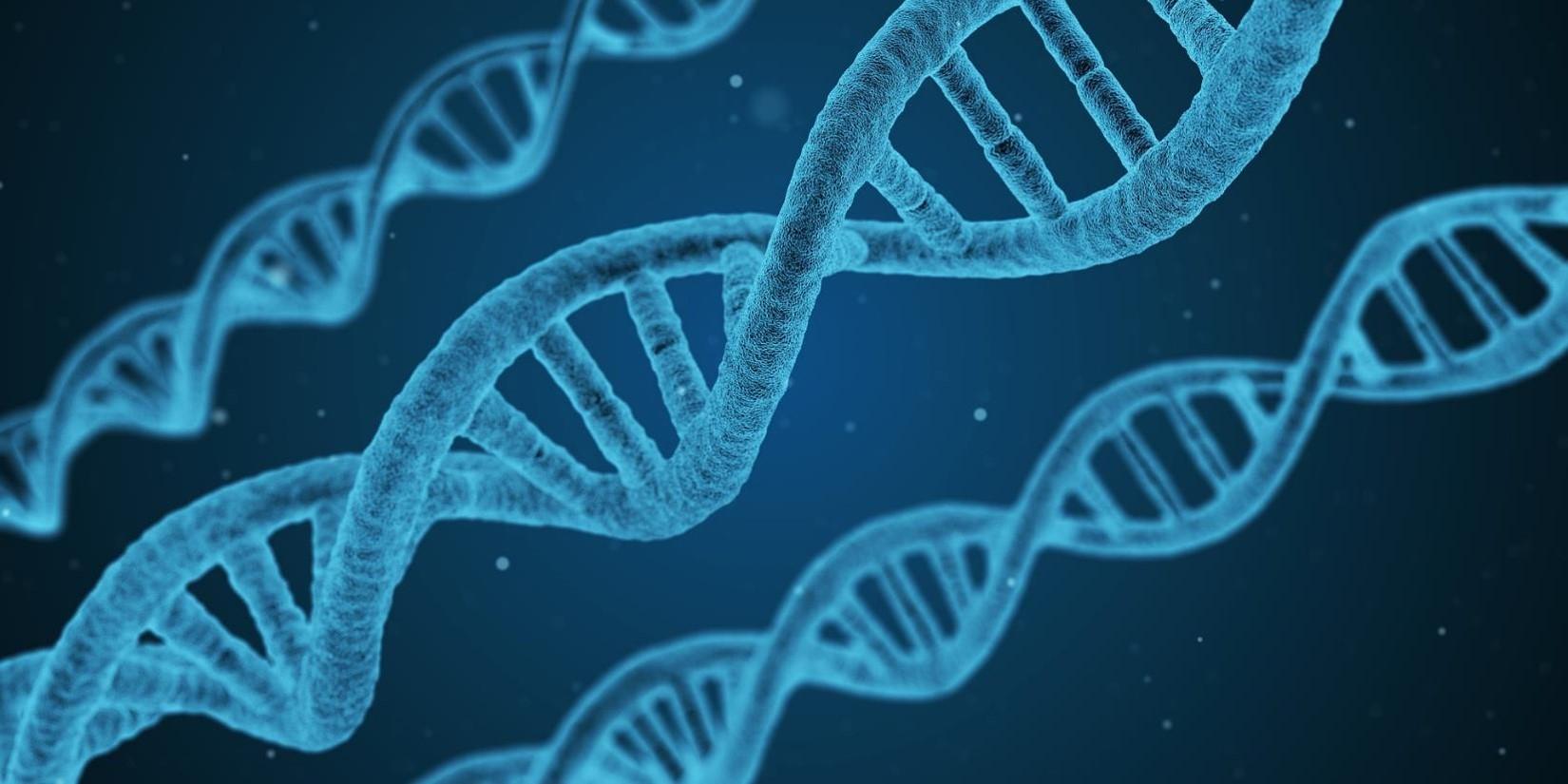 unc-genetics